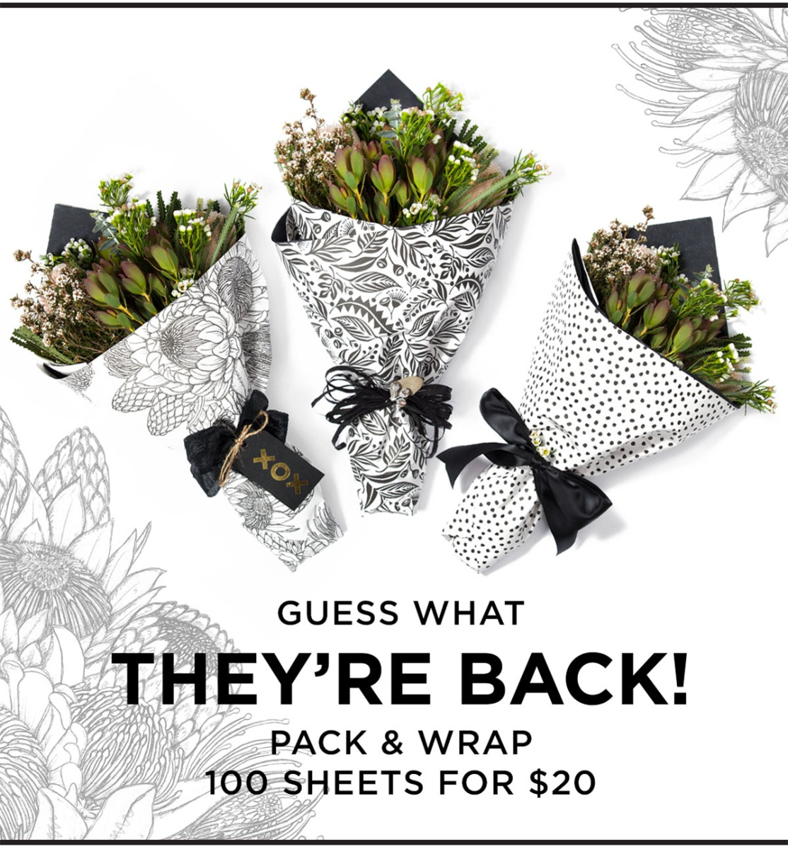 Pack&Wrap1